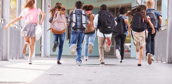 Área Protegida para escolas: Por que algumas ainda não tem?