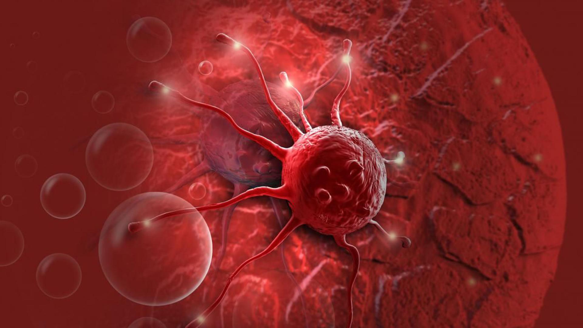 O que é o câncer? Tudo o que você precisa saber sobre essa doença